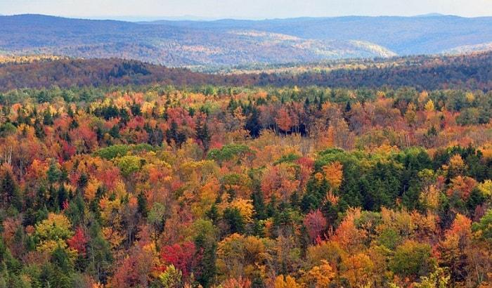 shtat-Vermont-1024x601-min