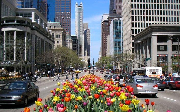 великолепная миля Чикаго