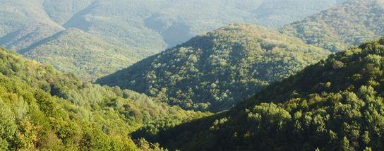 зеленые горы вермонт
