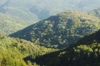 Зеленый штат Вермонт